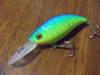 Basslog20071020a