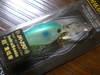 Basslog20071027a