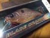 Basslog20080309a