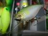Basslog20080327a