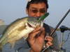 Basslog20080510b