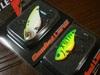 Basslog20081221a