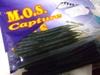 Basslog20090317a