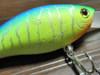 Basslog20100101c