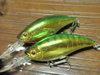 Basslog20100110a