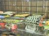 Basslog20100712d