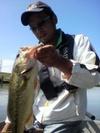 Basslog20100926a
