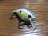 Basslog20110826a_2