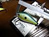 Basslog20111210c