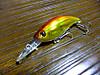 Basslog20120212a