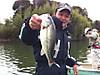 Basslog20120321a