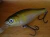 Basslog20060326c