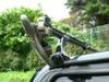 Basslog20060726c