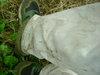 Basslog20060729g