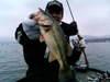 Basslog20070106c