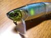 Basslog20070126a