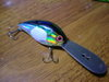 Basslog20070129a