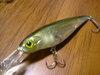 Basslog20070307b